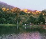 Matagalpa Selva Negra