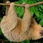Nature Tours Nicaragua